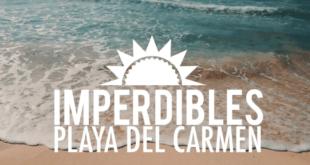 imperdibles de playa del carmen